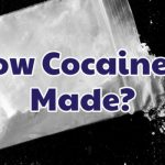 how-cocaine-is-made-1