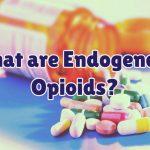endogenous-opioids-1