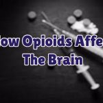 how-opioids-affect-the-brain-1