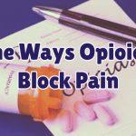 opioids-block-pain