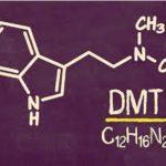 dmt-1