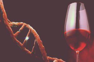 Alcoholism Hereditary